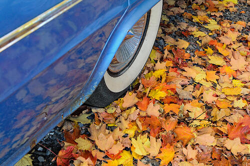 classic-car-in-the-fall-4-wp